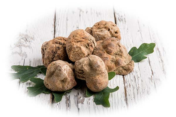 White Truffle | For the Love of Hair